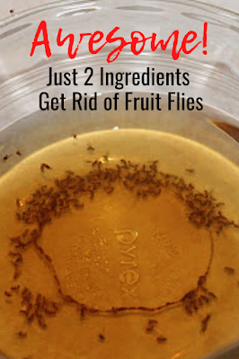 You need just two ingredients to get rid of fruit flies today.