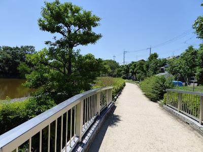 枚方市・市民の森(鏡伝池緑地) 緑化植物見本圏ゾーン 橋