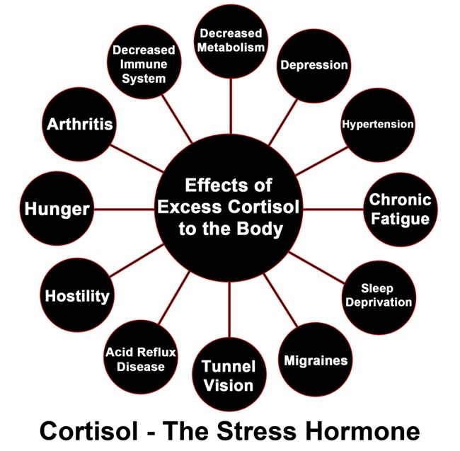 Excess Cortisol From Stress