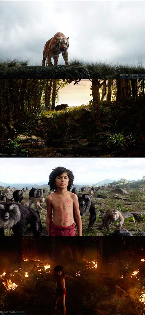 El Libro de la Selva HD 720p