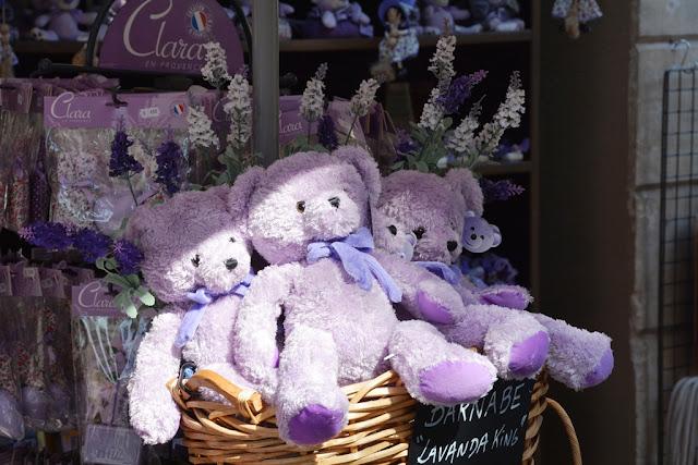 Avignon lavendel bear