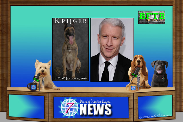 BFTB NETWoof News desk with screen shot of German Shepherd & Anderson Cooper