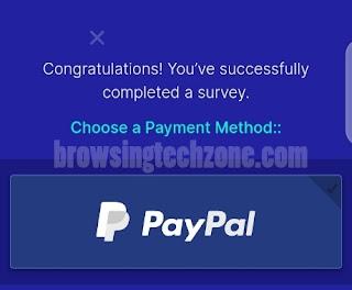Surveytime.io payment