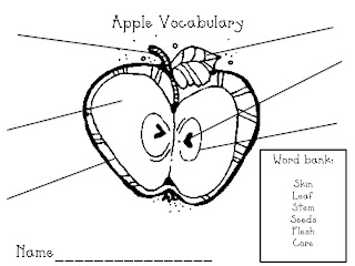 What the Teacher Wants!: You're the apple of my eye!