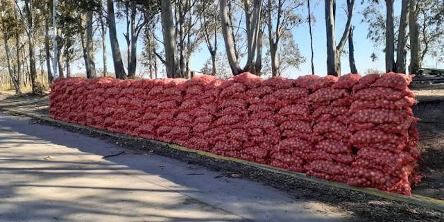 SENASA donó 13,5 toneladas de alimentos a entidades de bien público