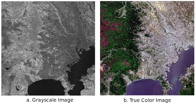 Grayscale and True Color Sentinel-2 Satellite Imagery