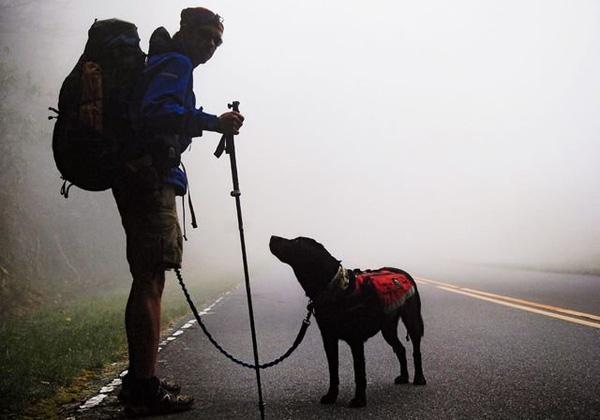 Chàng trai mù đi phượt khắp thế gian nhờ chó và... iPhone