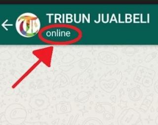 Cara Menyembunyikan Status Online di WhatsApp Terbaru