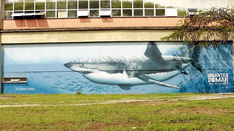 Museu Catavento ganha mural 3D de baleia Jubarte