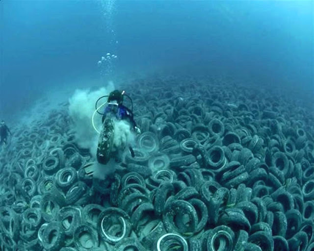 Florida's 'Tire Reef' Has Turned Into an Environmental Disaster