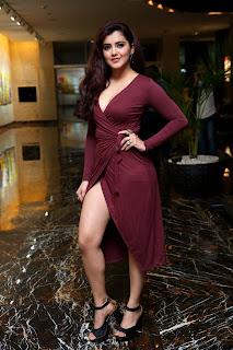 2019 feb 6 Malvika Sharma (HD) @ My South Diva Calendar 2019 Launch74