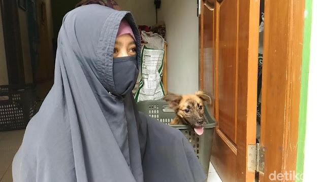 Kisah Hesti, Wanita Bercadar yang Kerap Menolong Anjing Malang
