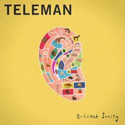 Teleman - Brilliant Sanity album cover on MetroMusicScene