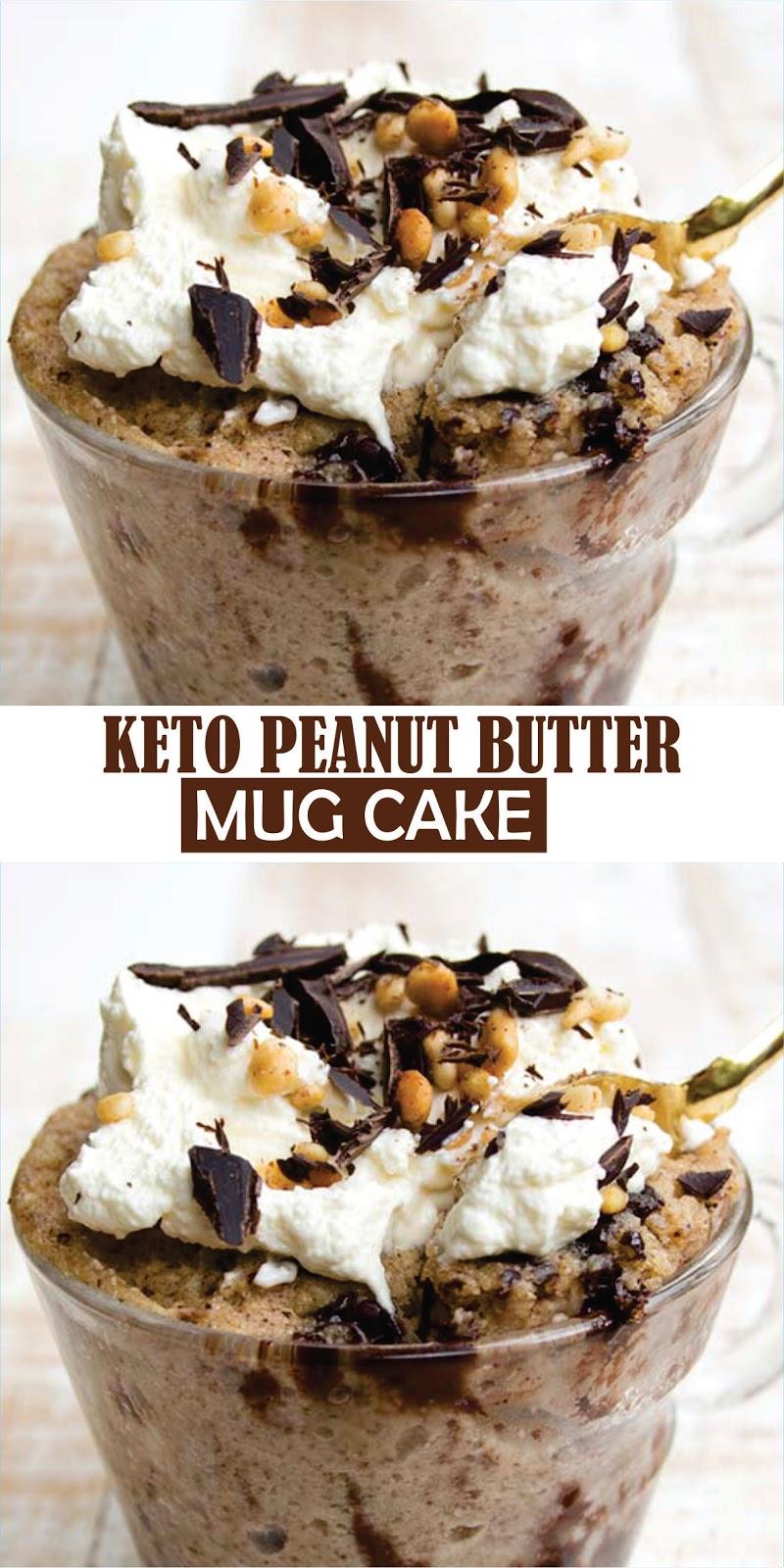 Keto Peanut Butter Mug Cake - delishmeal.biz