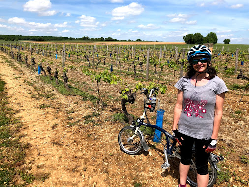 French Village Diaries the beauty of freedom, one week post confinement cycling Charente-Maritime vineyards
