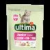 Prueba gratis Ultima Affinity para gatos
