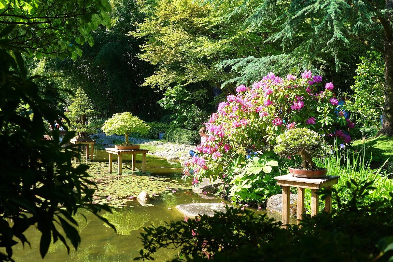 Decoration Village Jardin Japonais