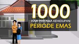1000 Hari Kehidupan Pertama Periode Emas