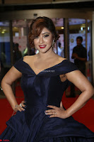 Payal Ghosh aka Harika in Dark Blue Deep Neck Sleeveless Gown at 64th Jio Filmfare Awards South 2017 ~  Exclusive 081.JPG