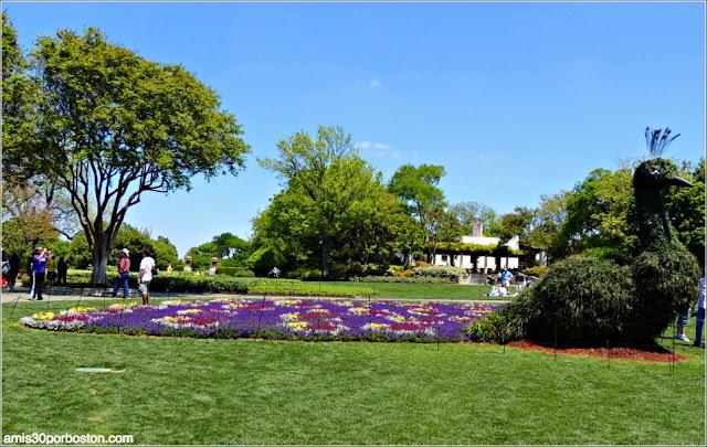 Lugares Turísticos y Atracciones en Dallas: Dallas Arboretum Botanical Garden