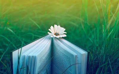 Pengertian, Aturan, Ciri, Jenis, dan Contoh Puisi Lama | Bahasa Indonesia Kelas VIII (Revisi)