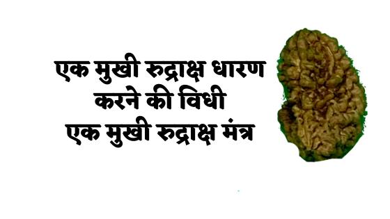 एक मुखी रुद्राक्ष धारण करने की विधी |  एक मुखी रुद्राक्ष मंत्र | 1 Mukhi Rudraksha Mantra |