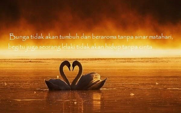 kata kata bijak cinta r tis menyentuh hati katabijaklogs