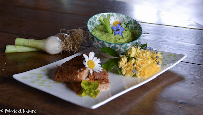 Pesto de tiges d'oignons nouveaux © Popote et Nature