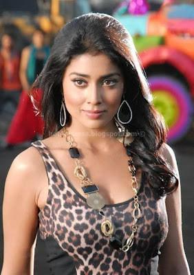 Shriya saran in nuvva nena movie