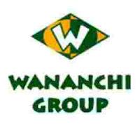 wananchi group%2B%25281%2529