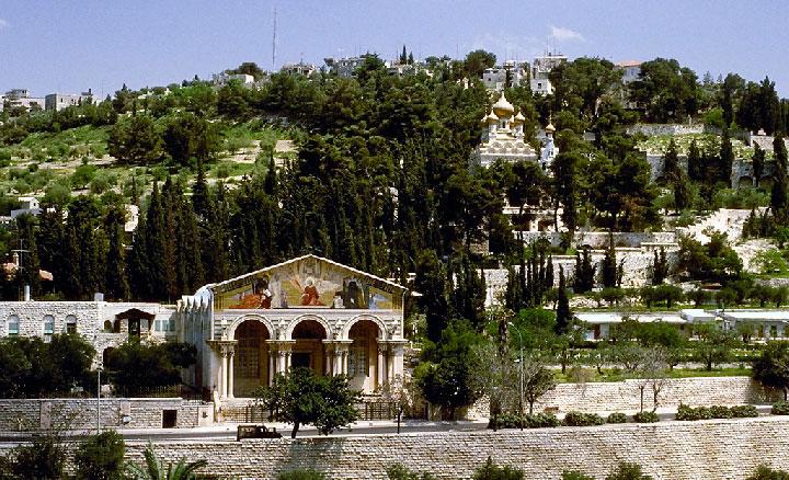 Mount Olive