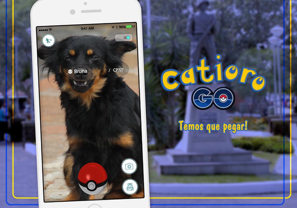 """Prefeitura de Esteio no Rio Grande do Sul convida você a virar um """"caçador"""" de cães abandonados"""
