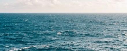 Επιστήμονες προειδοποιούν για «κατάρρευση» της βιοποικιλότητας της Μεσογείου μέσα σε 30 χρόνια