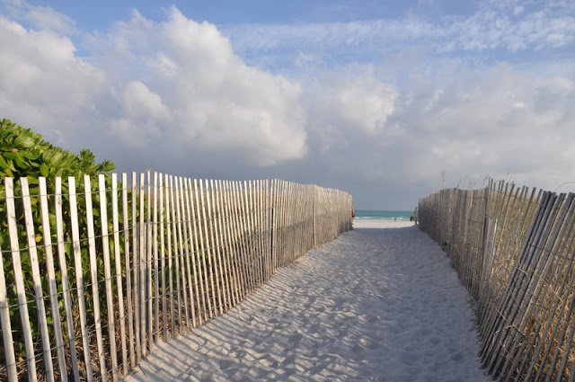 Walk-way with Grass to The Sea at Miami Beach