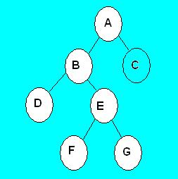 Singly Linked List in C