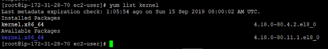 yum list kernel