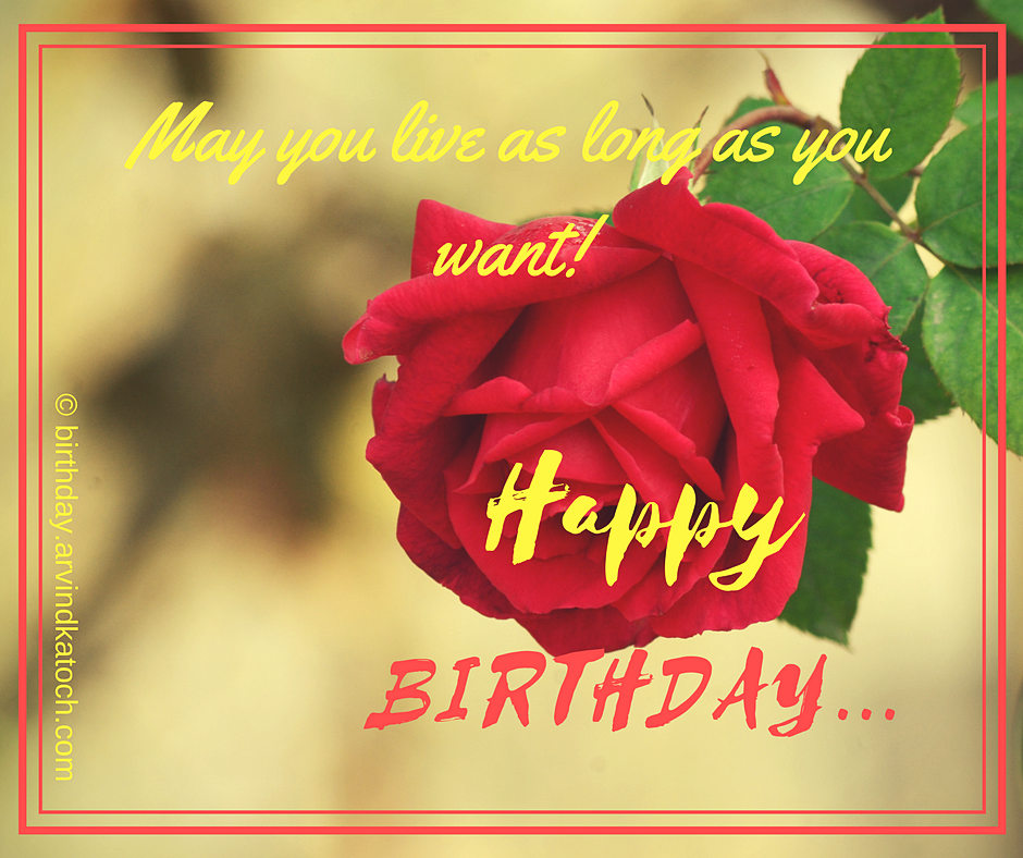 May You Live As Long As You Want Red Rose Birthday Card True