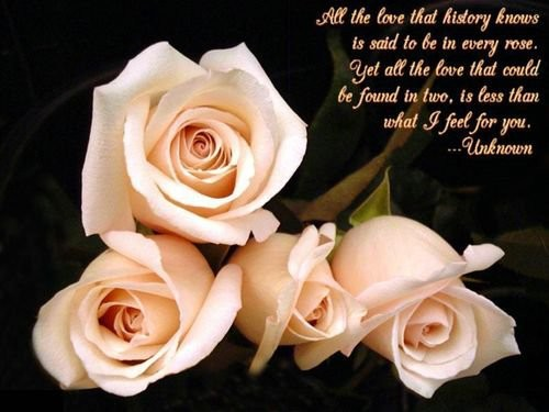 Love Quotes Of White Roses
