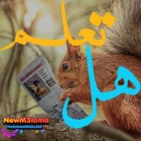 التردد الجديد لقناة كرتون نتورك بالعربية 2021 على القمر الصناعي نايل سات وعرب سات