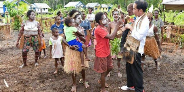 Stop Pencitraan, DPR Minta Jokowi Segera Temui Tokoh Adat Papua
