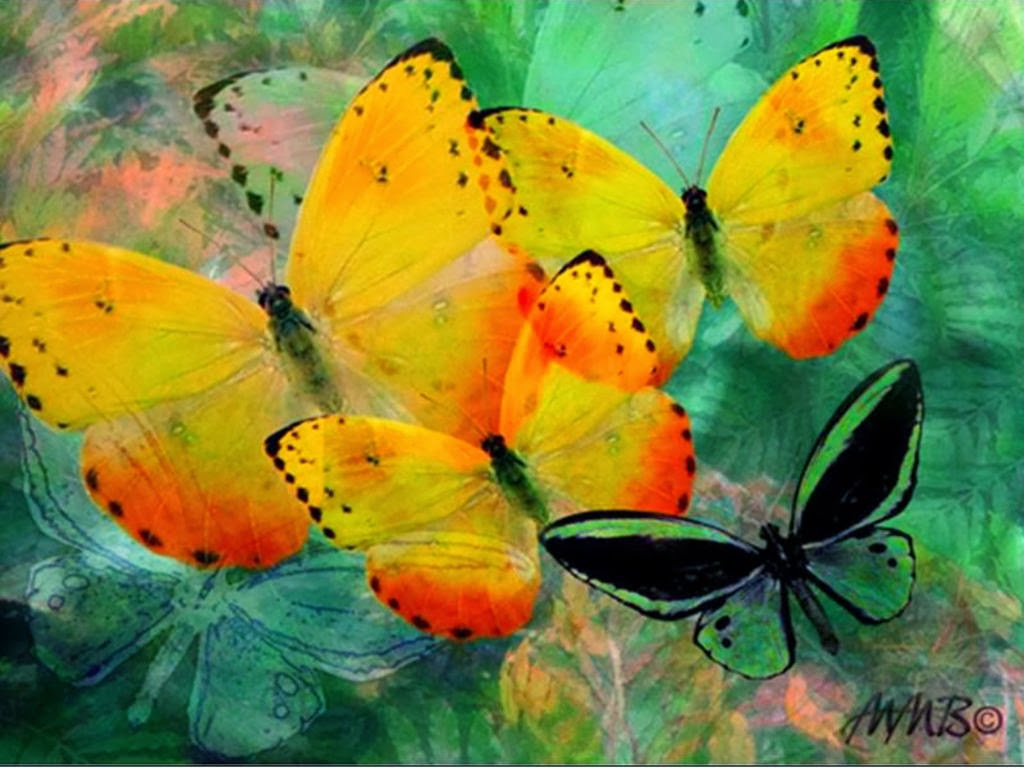 yellow butterfly wallpaper free - photo #7