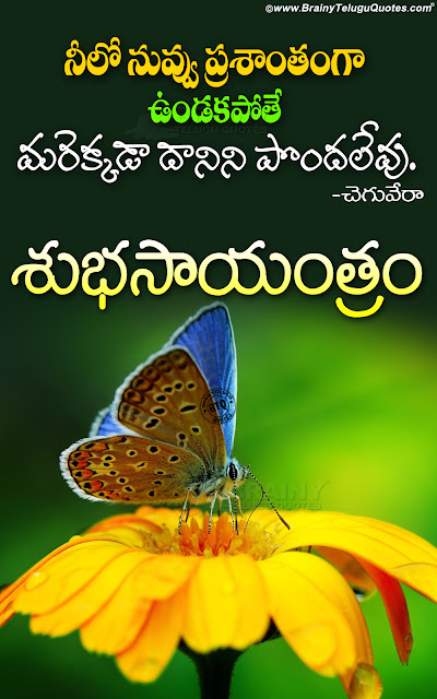 good evening messages in telugu, whats app sharing good evening quotes hd wallpapers in Telugu