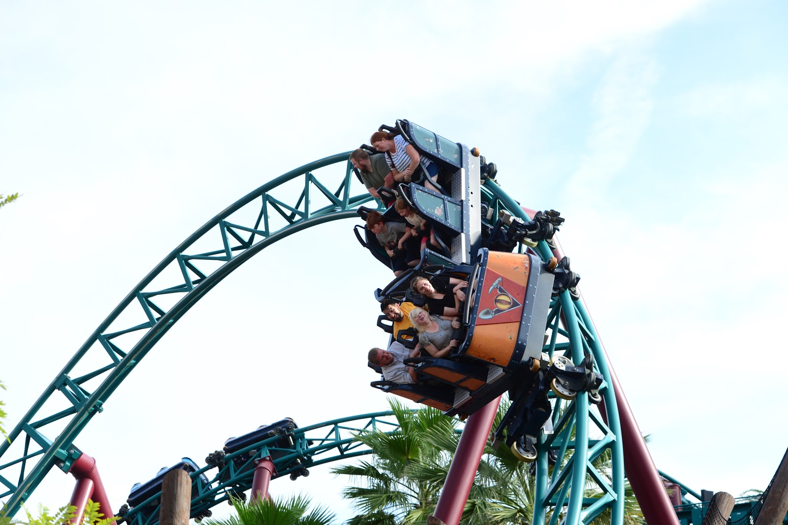Close Up Animal Encounters And Rides To Enjoy At The Seaworld Parks Florida North East Family Fun