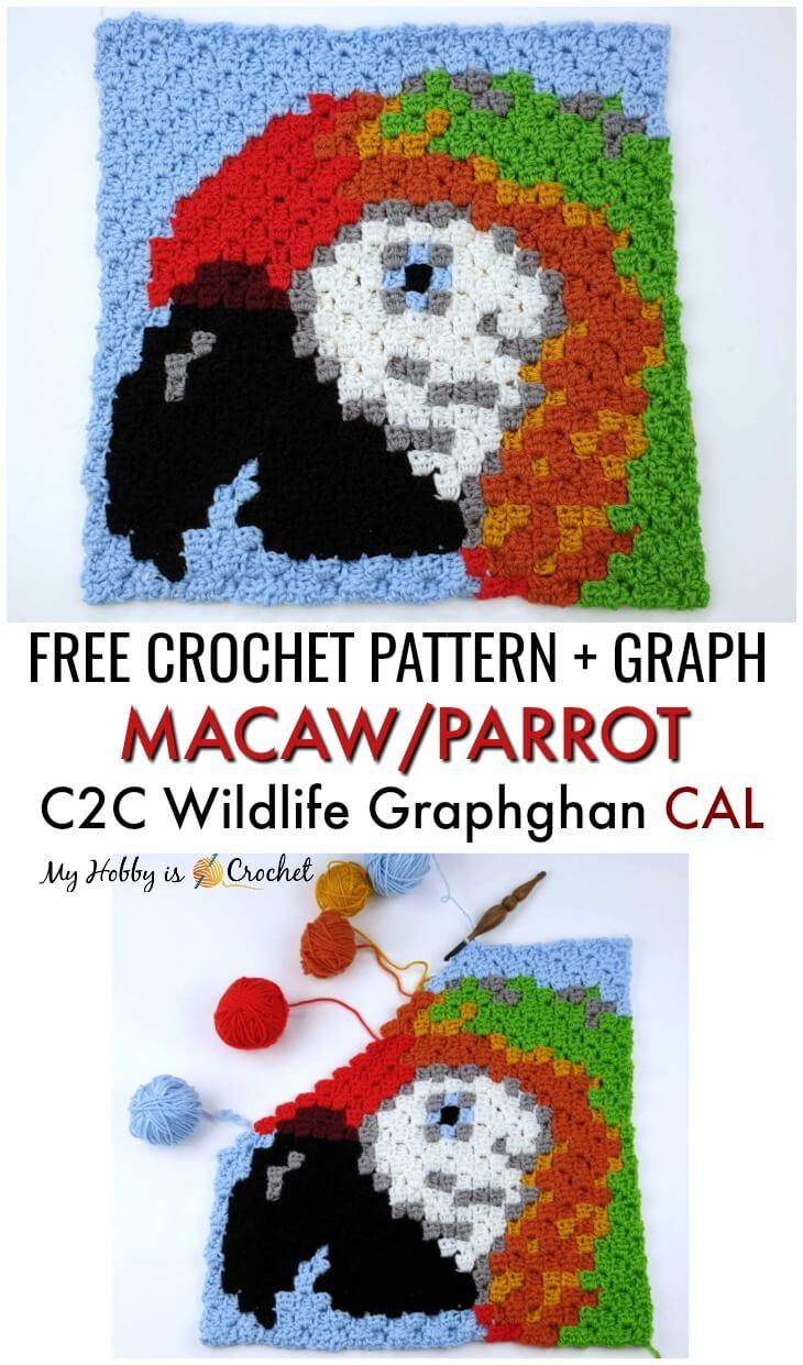 Macaw/Parrot C2C Square