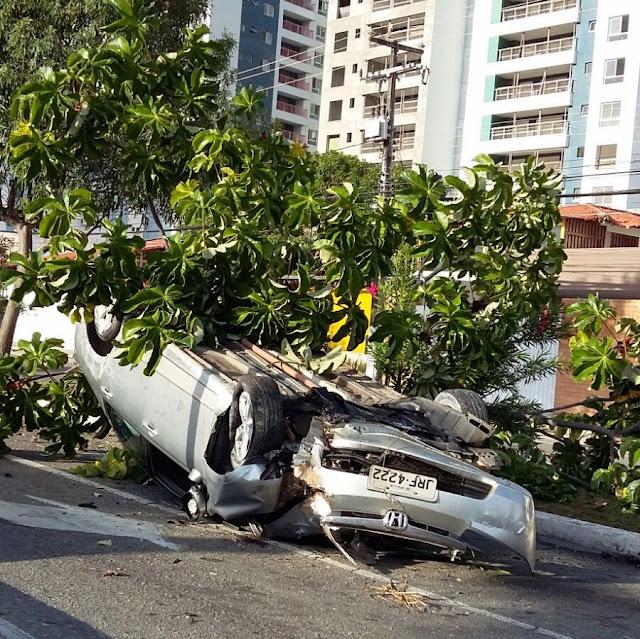 Motorista capota e derruba árvore em Aracaju