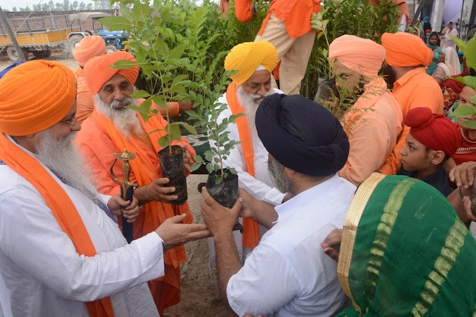 The Jathedars of two Takhats distributed plants