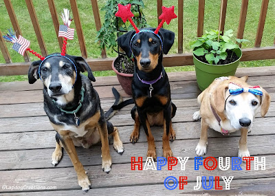 dogs dressed up for 4th of July