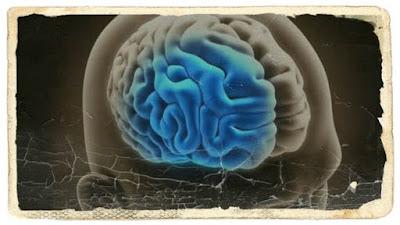 vitamine pentru buna functionarea creierului su regenerare memorie