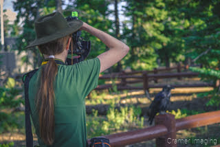 Photo of professional landscape photographer Audrey taking a picture of a raven by Cramer Imaging