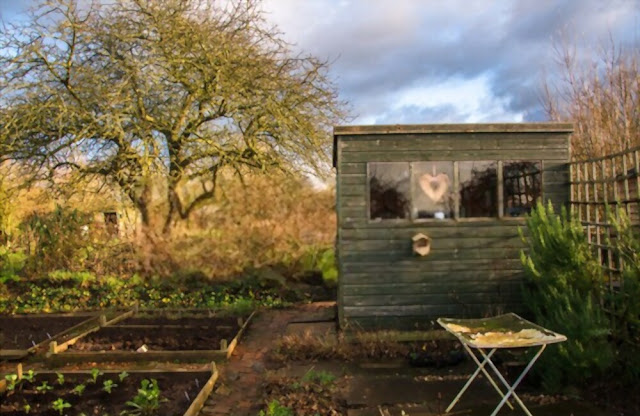 Zone 0 and Zone 1 of permaculture farm